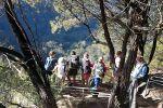 Melba Copland Secondary School Students Enjoy Bushwalking