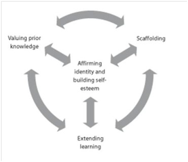 IB Model for differentiation