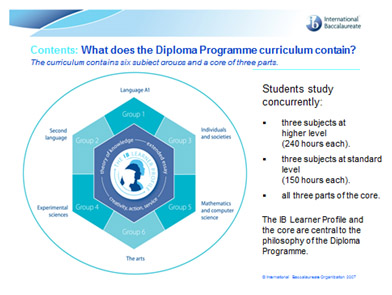 What does the Diploma Programme curriculum contain?